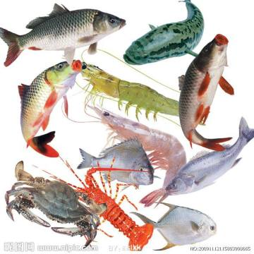 Ikan ketam shrine feed attractant TMAO