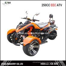 200ccm Trike ATV Kawasaki Quad Heißer Verkauf in Deutschland 250cc Trike ATV mit EEC Approved