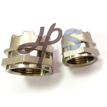 Brass Ppr/CPVC Inserts Fittings Offered in China