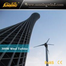 Système hybride solaire de télévision en circuit fermé de vent du petit générateur 300W de turbine de vent