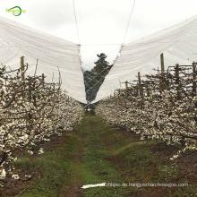 Transparente Plane Kirschbaum Kunststoff Schutzhülle