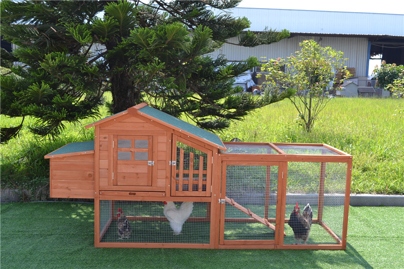 cheap chicken coop kits for sale
