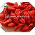 La venta caliente Wolfberry Medlar se secó la bayas de Goji orgánicas de la importación de la baya de Goji, China las frutas del níspero