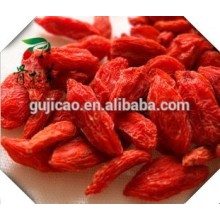 Hot Sale Wolfberry Medlar Secas Goji Berry Orgânica Bagas De Importação Goji, China frutas medlar