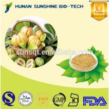 Pure natural emagrecimento produtos Garcinia Cambogia extrato em pó 50% HCA