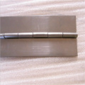 Stainless Long Hinge Curtain Wall Hinge
