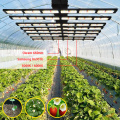 640 W LED Grow Light Regulável