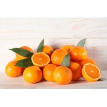 De Buena Calidad Orange