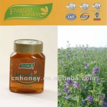 Pure natural alfalfa honey para la venta