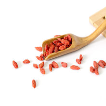 Chinese dried and red goji berry wholesale wolf berry