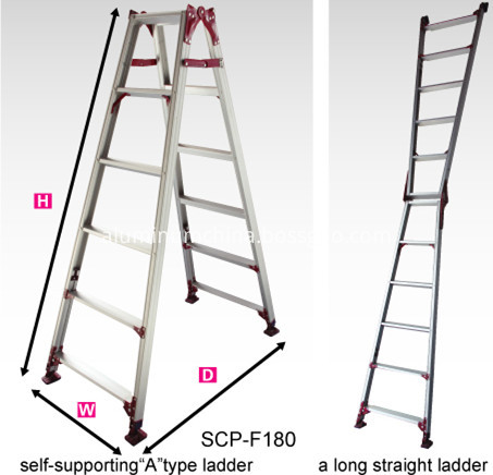 double side ladder SCP