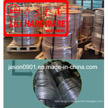 Steel Wire Factory Sell