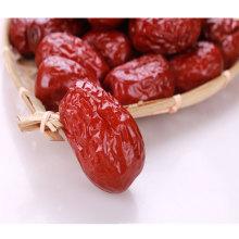 Chinesische gesunde organische rote Daten für Verkauf