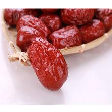 Datas vermelhas orgânicas saudáveis chinesas para venda