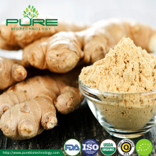 Dehydrated Organic Ginger Powder