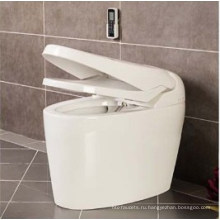 Горячий Продавать Роскошные Умный Туалет (W1509)