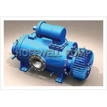 Horizontal & Vertical2W. W Twin Screw Pump