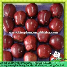 China apple huaniu