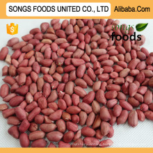 Wholesale Peanuts Red Skin Peanuts Kernels