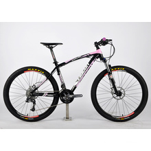 New High Class Mountain Bicycle (FP-MTB-A049)