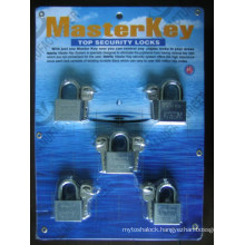 Steel Padlock with Master Key Lock (AL-40, AL-50)
