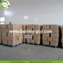 Hight Quality Nutrition Dried Organic Goji Berry