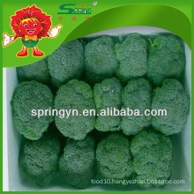 EU standard best supplier of green broccoli from Yunnan