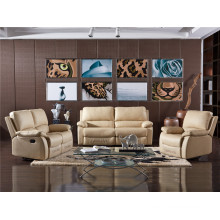 Electric Recliner Sofa USA L&P Mechanism Sofa Down Sofa (C743#)