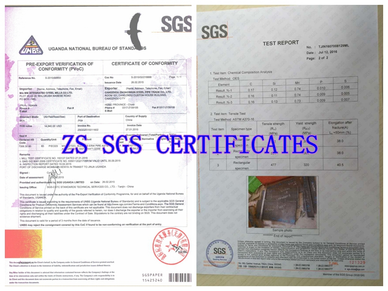 SGS inspection report_