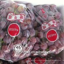 красная виноградина глобуса 6-7 отдельных мешках или навалом