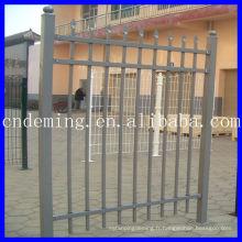 Clôture en fer, clôture décorée, porte, main courante