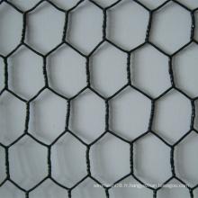 Fil hexagonal de fabrication de fil de PVC / fil de poulet pour l'animal