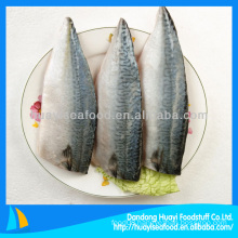 mackerel fillet iqf