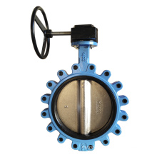 Lug Type Concentric Butterfly Valve with Gear Operator