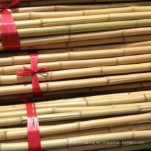 Nutural Bambus Pole für landwirtschaftliche