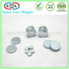 customized round size neodymium professional speaker magnet