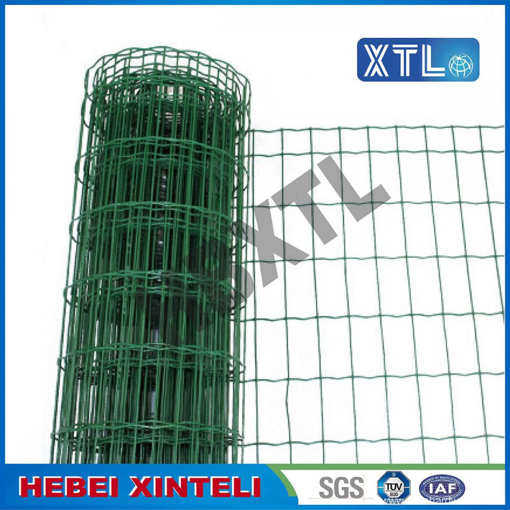 High Quality Holland Wire mesh
