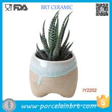 Planta de cerâmica original pequeno jardim vaso de flores