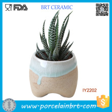 Original Ceramic Plant Little Garden Flower Pot