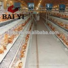 Cage de batterie de poulet A-120 pour pondeuses Poules pondeuses
