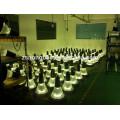 Direto fábrica CE RoHs UL alumínio em forma de cogumelo IP65 impermeável 20W 30W 40W 50W levou lâmpada de jardim