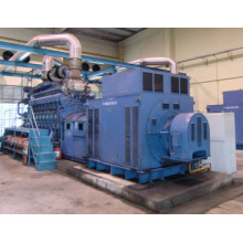 Diesel / Gasgenerator Elektrizitätskraftwerk