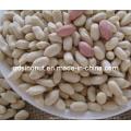 2014crop Blanched Peanut Kernels 29/33