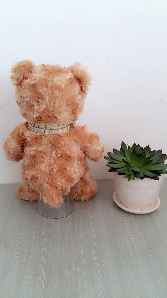 Elegante cravatta torsione fiore teddy bear