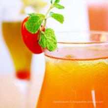 Extrait de goji naturel poudre goji berry boisson boisson en poudre