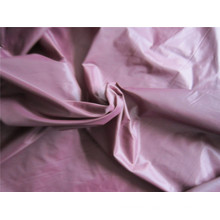 20d Nylon Taffeta Fabric for Down Coat (XSN006)