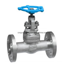 Forged F304L Dn25 Class300 Gate Valve