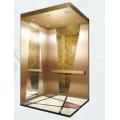 Sicher Elevator Grv20 Home Elevator / Villa Elevator