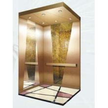 Зихер Лифт Grv20 Домашний Лифт/ Лифт Виллы