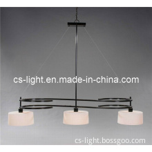 Simple Indoor Pendant Light for Decoration (CTC248)